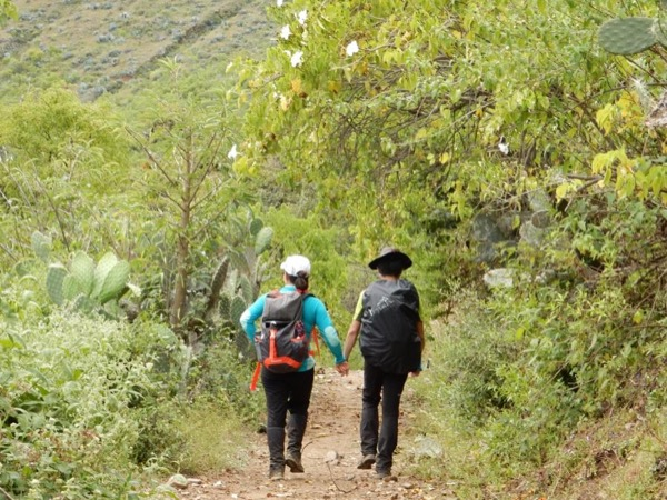 Private Inca Trail to Machu Picchu - 2 Days, 1 Night