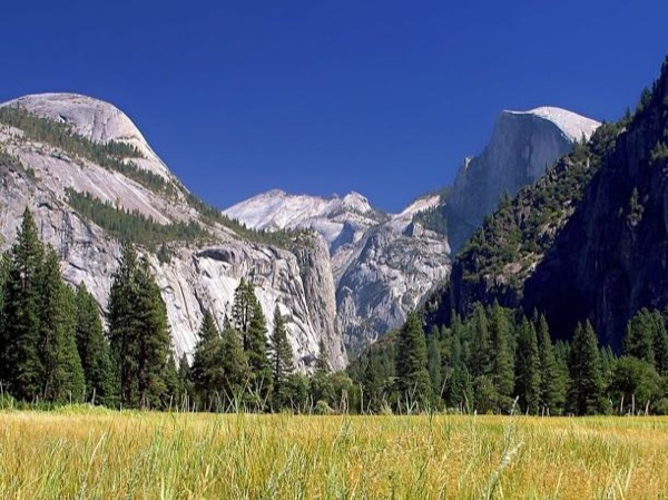 Yosemite and the California Gold Country (2 days)
