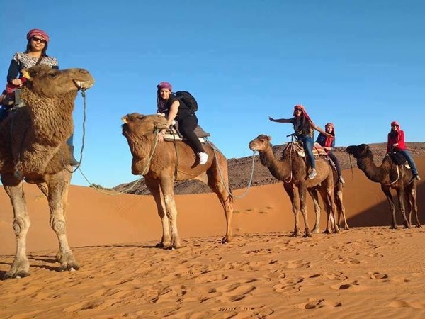 Sahara Desert from Fez to Marrakech 3days