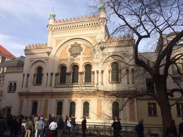 Private tour guide Vojtěch
