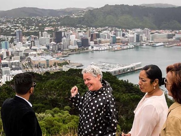 Full Day Private Tour of Wellington