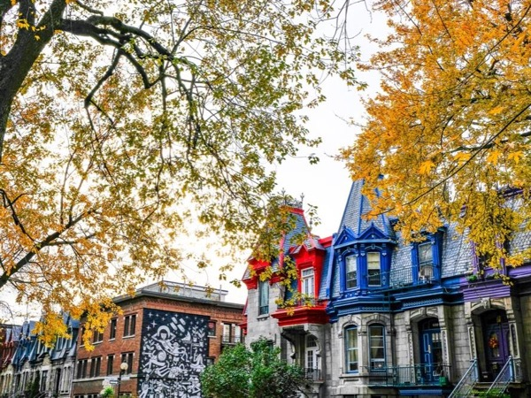 Montreal 101 - Private Local Urban Experience Walking Tour