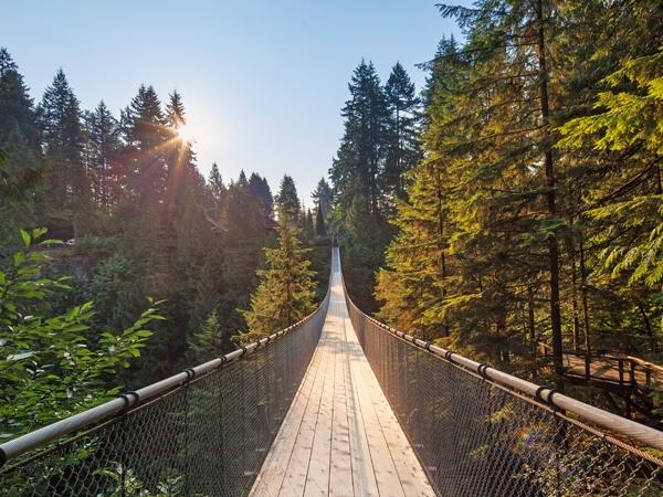 Capilano + Grouse Mountain with private transportation