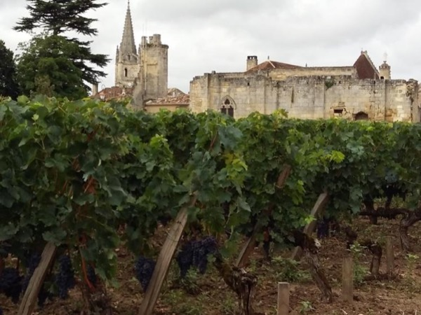 Bordeaux - St Emilion private wine tour