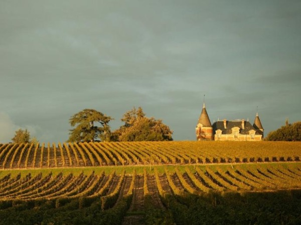 Exclusive Sauternes wines with a private guide