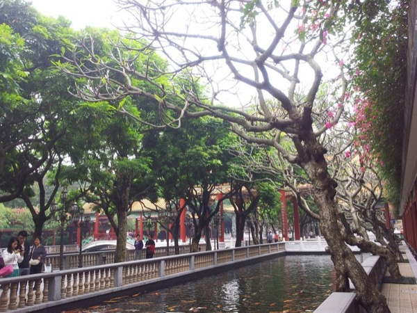 Guangzhou shawan old town and baomo garden day tour