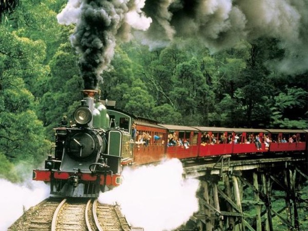Dandenong Ranges - Steam Train & City - Private tour