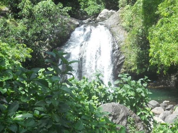 Countryside Adventure! A private tour from Ocho Rios