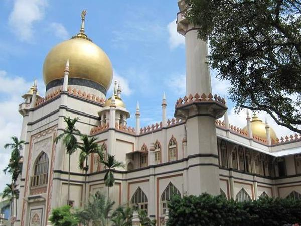 City + Kampong Glam Walking Tour (4hrs or more)