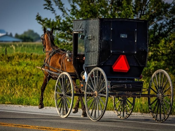 Pittsburgh's Amish Country Tour