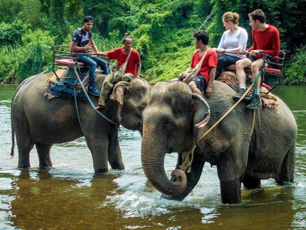 Ubud Village Premium Tour : Elephant Ride Adventure, Ubud Monkey Forest & Ubud Artisan Village