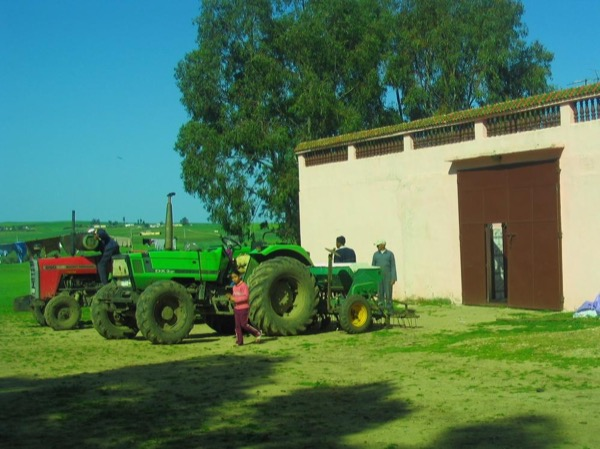 Culinary tour and agritourism in a Moroccan farm