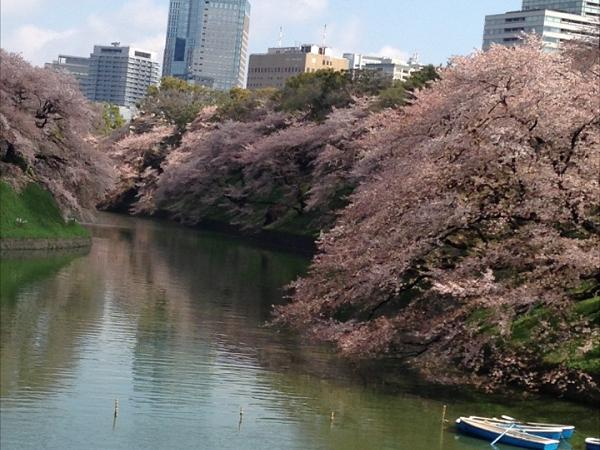 Best of Tokyo - a six-hour private tour by mini-van