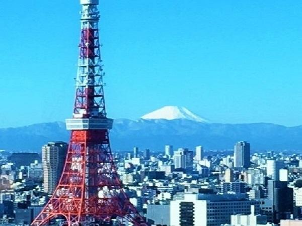 Best of Tokyo - a half day private tour by mini-van