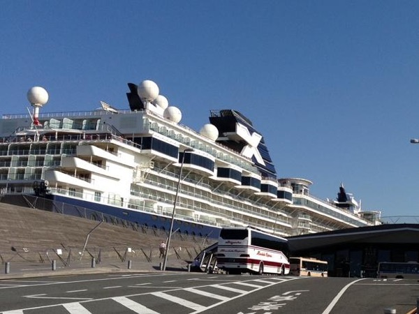 Best of Tokyo - a 7-hour private tour from Yokohama Pier by mini-bus