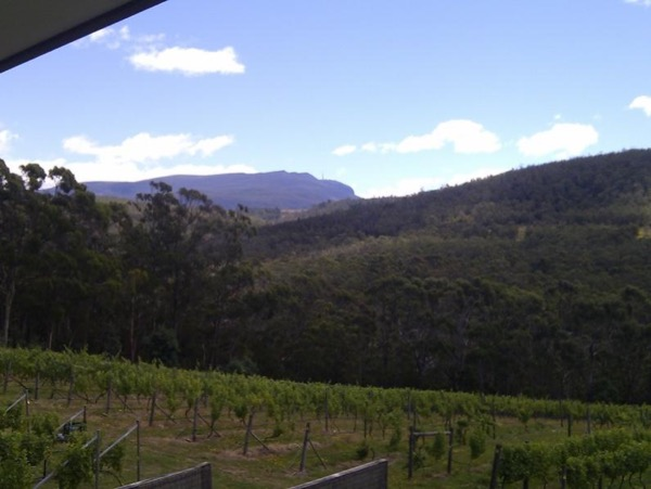 Huon Valley Food and Wine Tasting - Private tour