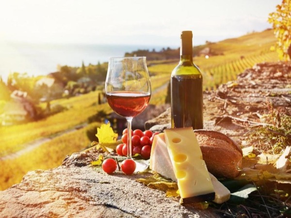 The Food & Wine Story of Slovenia- 7hrs Private trip from Koper.