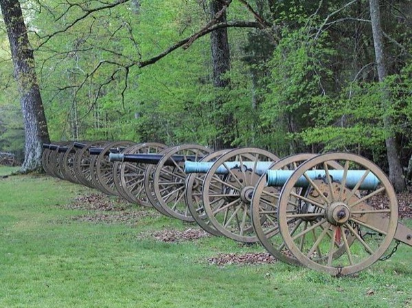 Battle of Shiloh - Private and Personal 8 Hour Tour