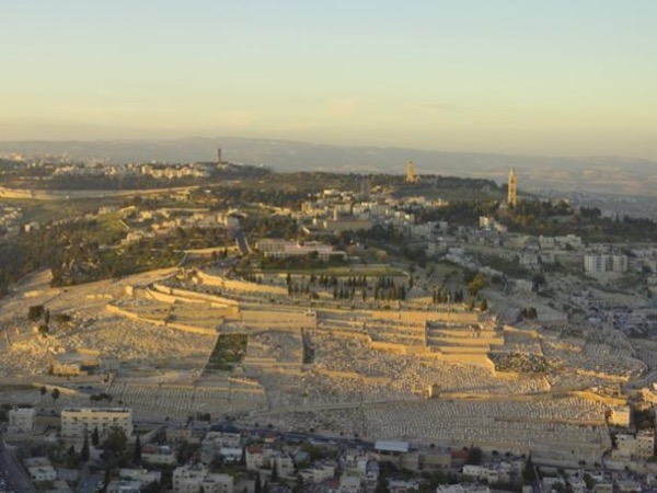 Full Day Tour Mt of Olives- Wailing Wall - Pool of Siloam -Mt Zion