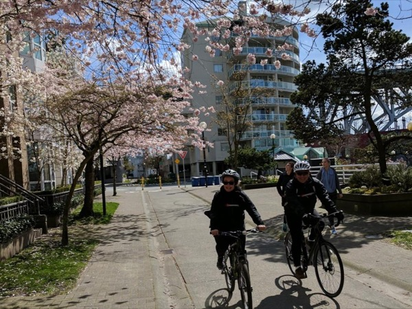 Vancouver Indulgence Bike Tour: False Creek, Gastown, Chinatown eating & drinking (Full Day) - Private tour