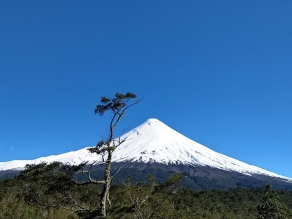 Day Tour to Osorno Volcano and Petrohue Falls