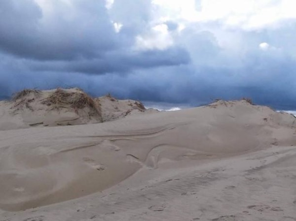All day tour in Curonian Spit