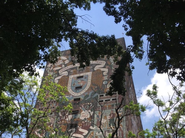 UNAM and Coyoacan Private Tour