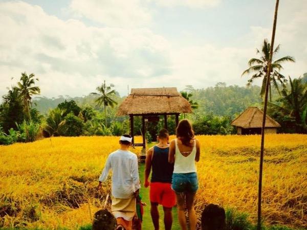 Experience Ubud Culture & Scenic Landscape : Bali Private Customised Tour