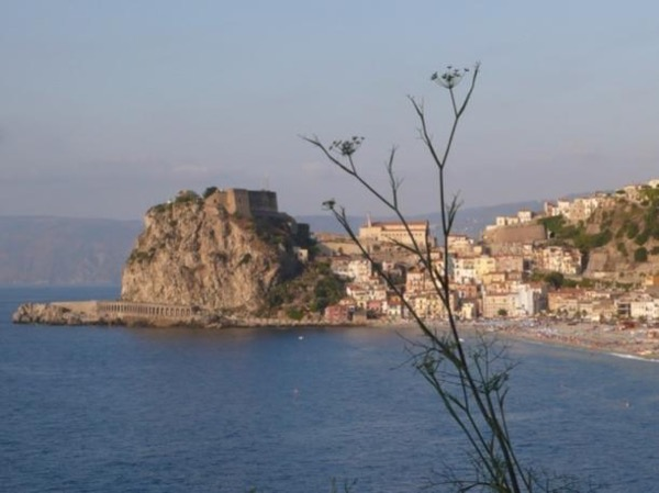 SCILLA half day walking guided tour