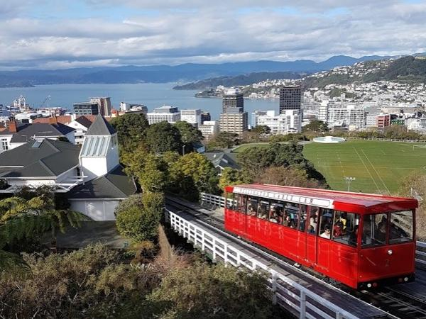 Wellington City and Coast Full Day Tour