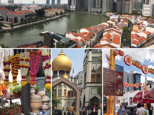Surprising Singapore Full-Day Private Tour