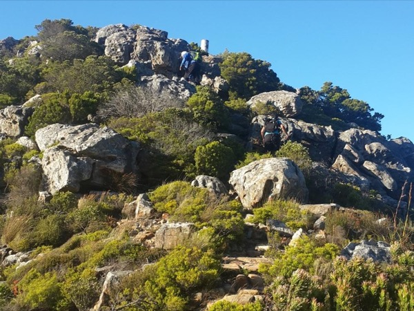 Constantia Corner, a private guided hike.