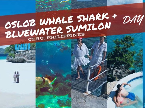 Bluewater Sumilon Island Experience Plus Whale Shark Encounter