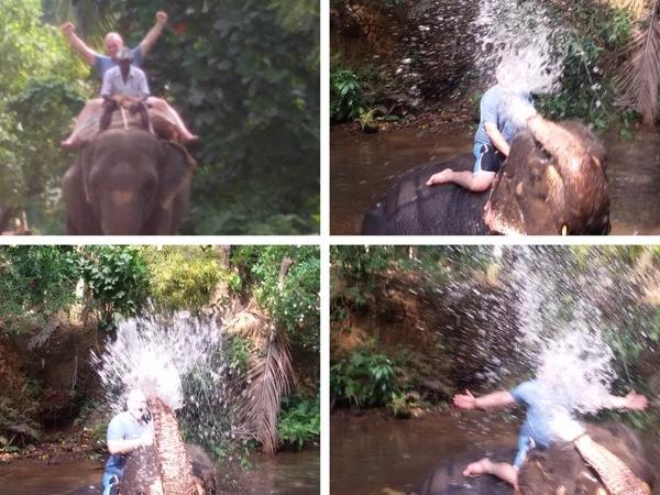 Elephant Ride and Wash Private Tour in Goa