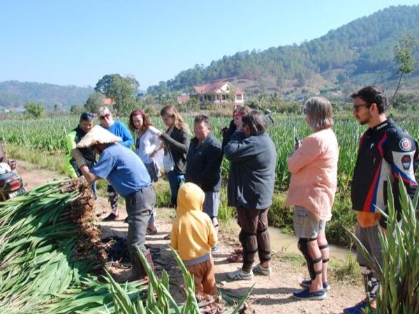 Special Dalat city tours