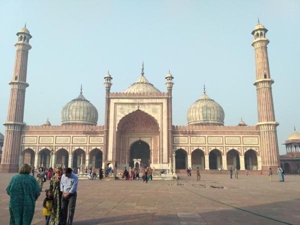 Private tour guide Rohit