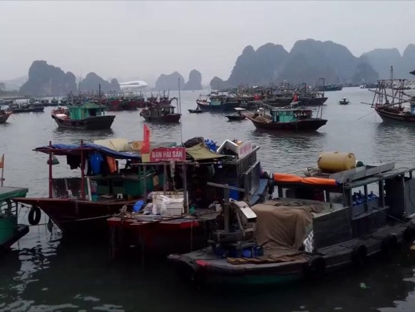 Halong city tour with local fish floating market