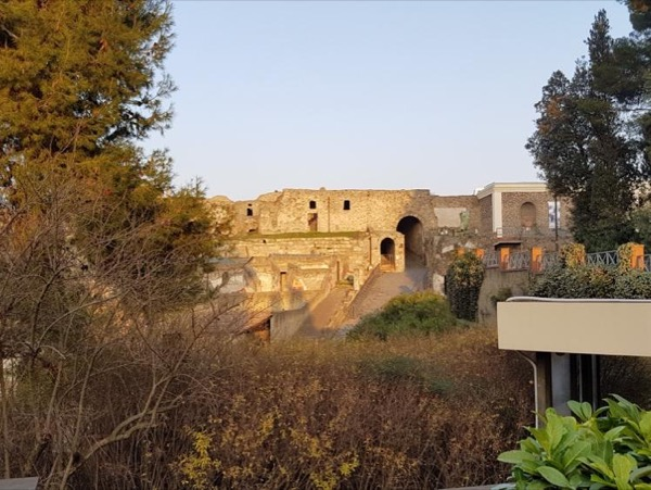 Pompeii and Herculaneum walking tour led by an Archaeologist