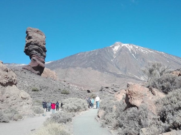 Teide and Winery