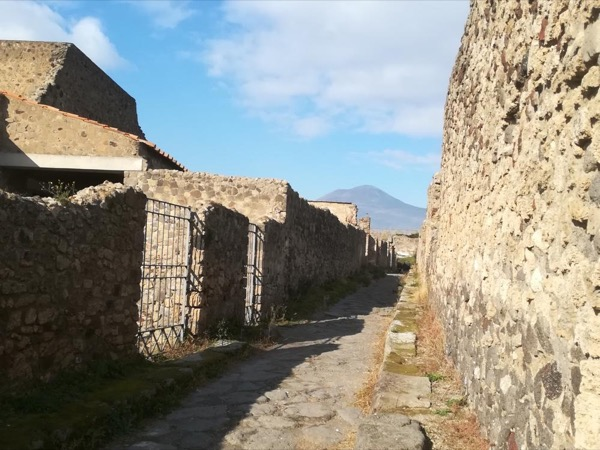 Private Pompeii: 2 hours with an archaeologist