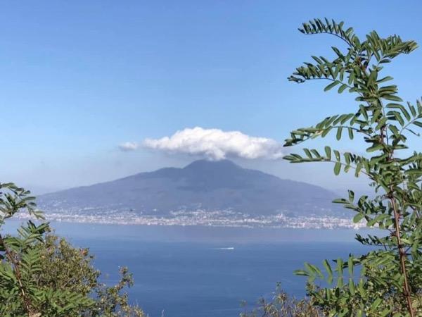 Vesuvio - Pompeii and wine taste
