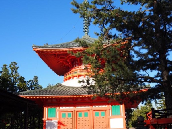 1 Day Private Round Tour - Osaka to Mount Koya