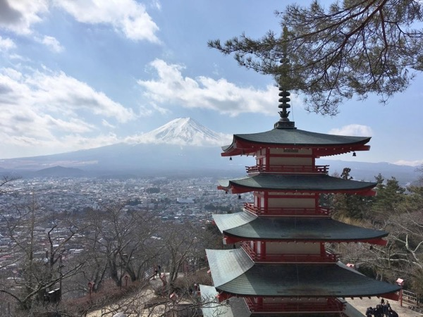 Exciting Mt. Fuji from Tokyo by Private Transportation