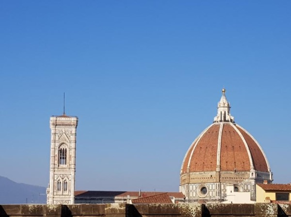 One Day in Florence from Rome by fast train