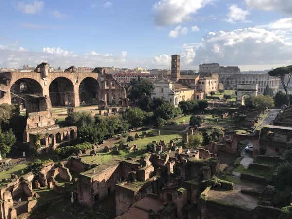 3h Private Colosseum, Roman Forum and the Palatine Hill with a professional archaeologist