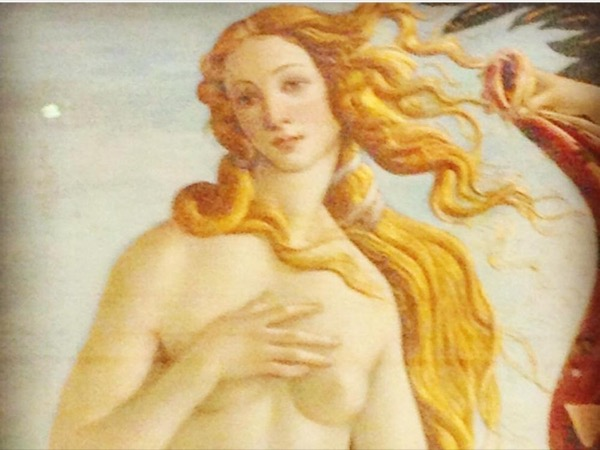 4 hour Private Walking Guided Tour - Florence & The Uffizi