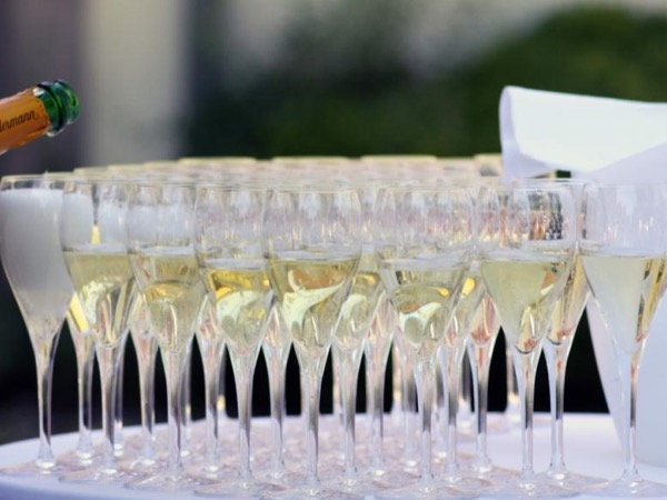The Champagne Excellence Private Guided Tour Experience: Vineyards, Cellars and Wine Tastings