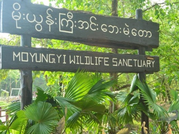Private excursion to Moeyungyi Sanctuary and Bago