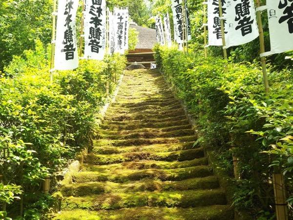 Private tour guide Shoji