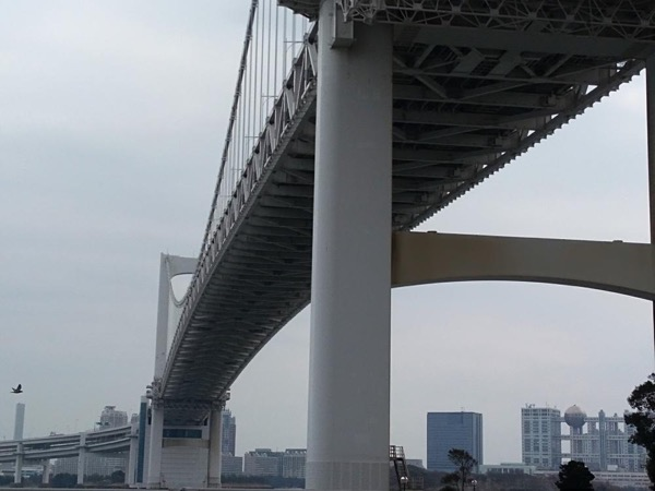 Totally Tokyo: Rainbow Bridge walk, robots, shrines and owls!